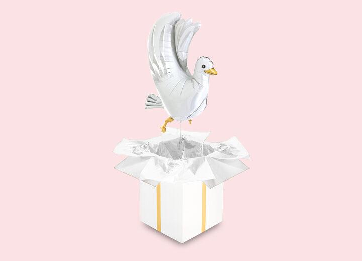 Gołąb na ślub
